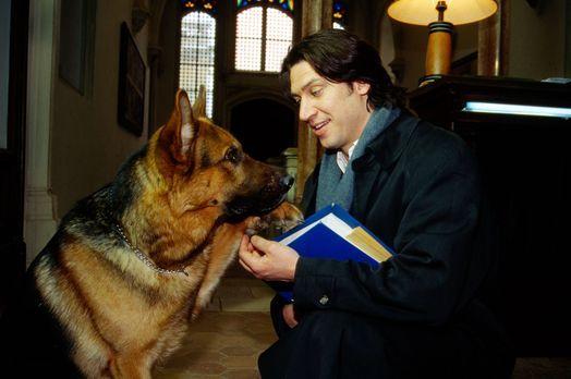 Kommissar Rex - Rex und Kommissar Moser (Tobias Moretti) ermitteln im Hauptqu...