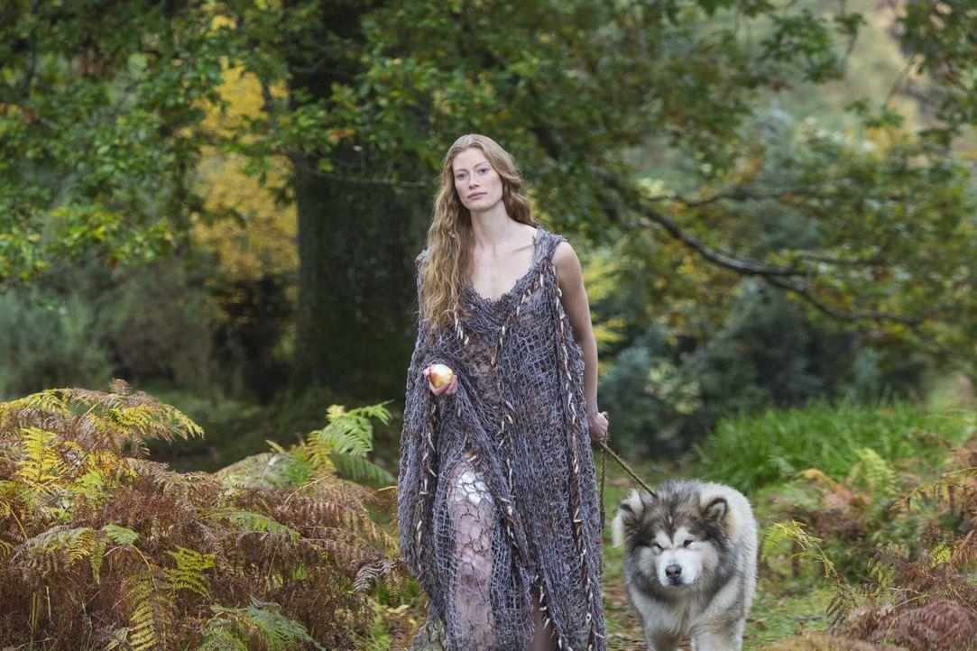 Kaum trifft Ragnar auf die mysteriöse Aslaug (Alyssa Sutherland), da ist er auch schon total fasziniert von Brunhildes Tochter ... - Bildquelle: 2013 TM TELEVISION PRODUCTIONS LIMITED/T5 VIKINGS PRODUCTIONS INC. ALL RIGHTS RESERVED.