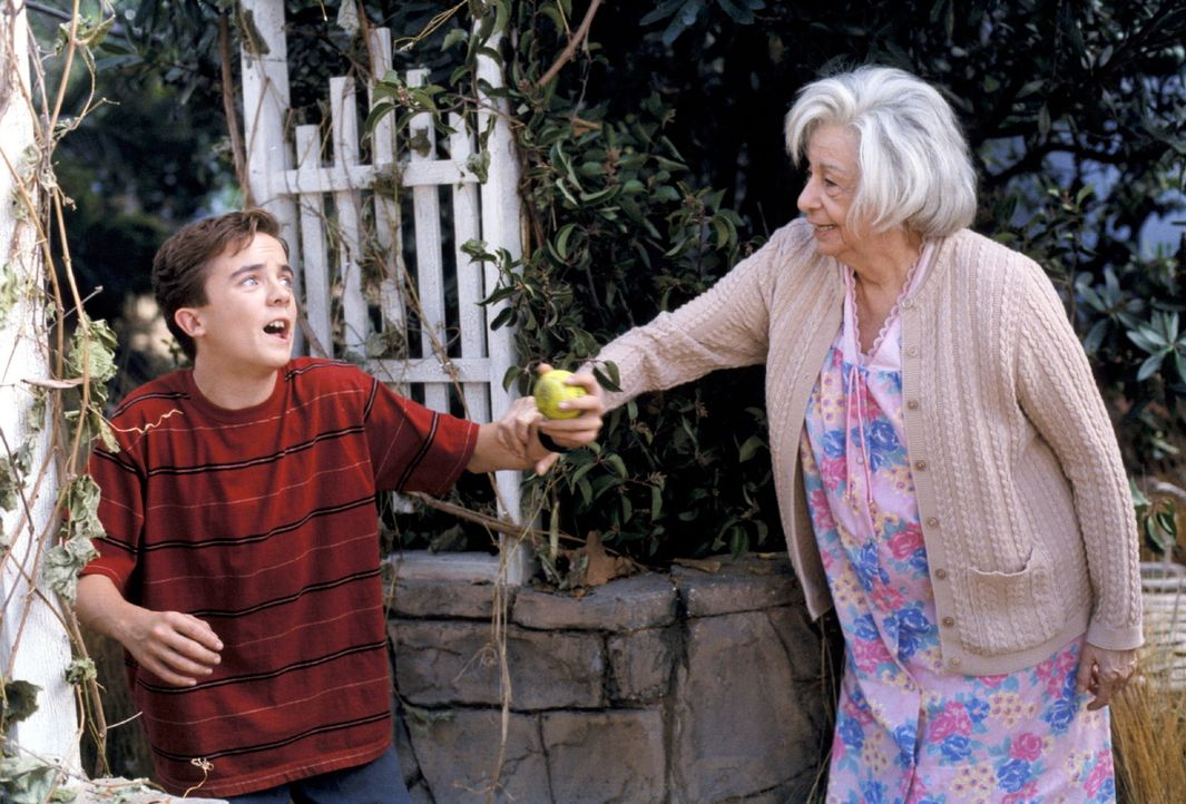 Unabsichtlich verletzt Malcolm (Frankie Muniz, l.) die sonderbare Nachbarin Mrs. Griffin (Florence Stanley, r.). Nun muss er die Konsequenzen tragen... - Bildquelle: TM +   2000 Twentieth Century Fox Film Corporation. All Rights Reserved.