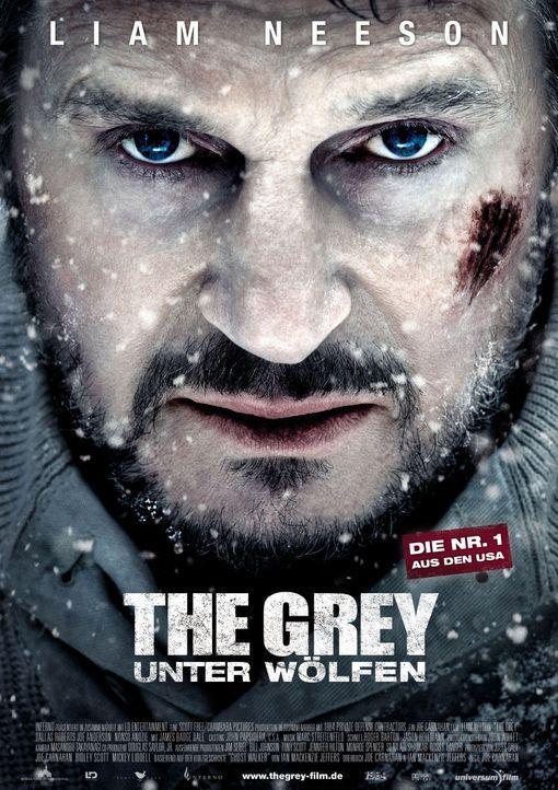 the-grey-woelfen-hauptplakat-universum-filmjpg 989 x 1400 - Bildquelle: Universum Film