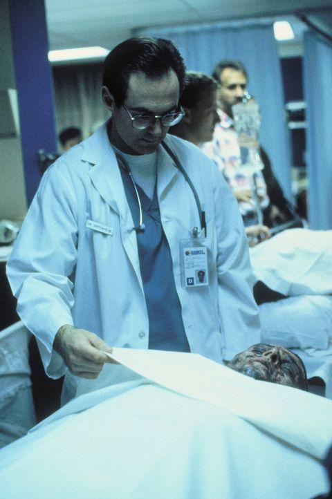 Nachdem Scully und Mulder ihm einen Besuch abgestattet haben, nimmt der Mediziner die Verbrennungsopfer genauestens unter die Lupe. - Bildquelle: TM +   Twentieth Century Fox Film Corporation. All Rights Reserved.