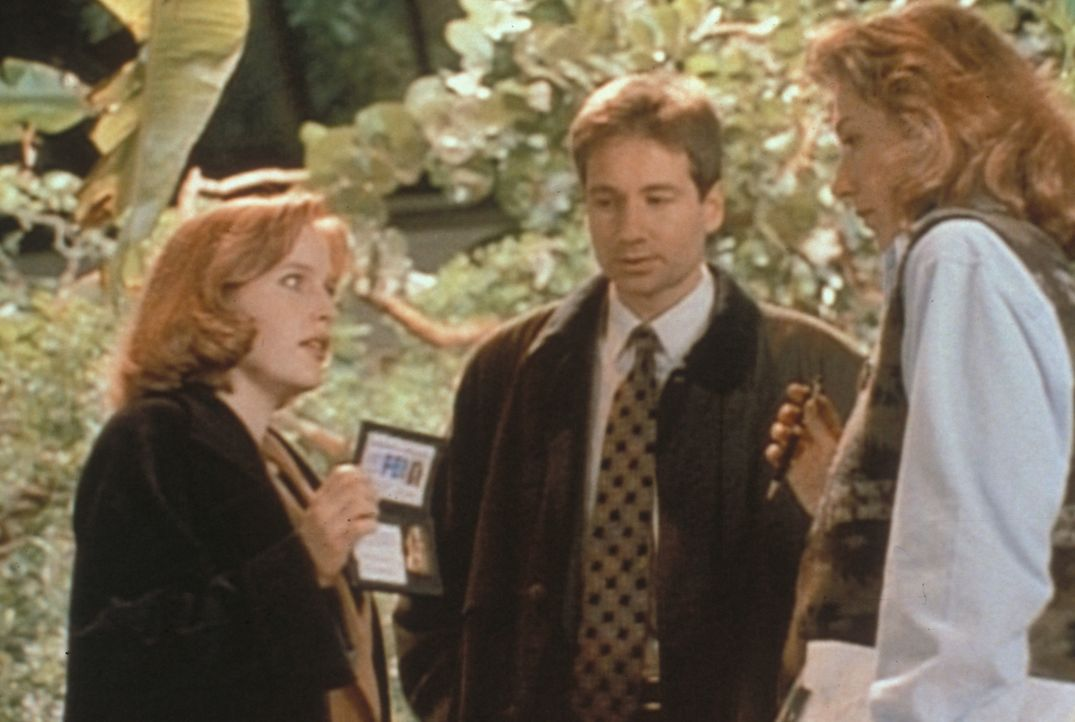 Scully (Gillian Anderson, l.) und Mulder (David Duchovny, M.) versuchen, von der Tierparkleiterin Willa Ambrose (Jane Atkinson, r.) zu erfahren, war... - Bildquelle: TM +   Twentieth Century Fox Film Corporation. All Rights Reserved.