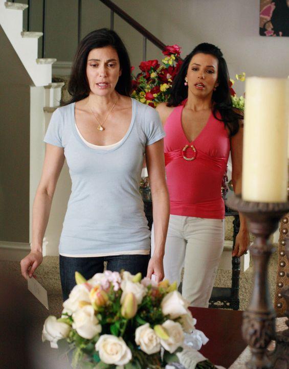 Zwischen Susan (Teri Hatcher, l.) und Gabrielle (Eva Longoria, r.) entbrennt ein erbitterter Streit ... - Bildquelle: 2005 Touchstone Television  All Rights Reserved