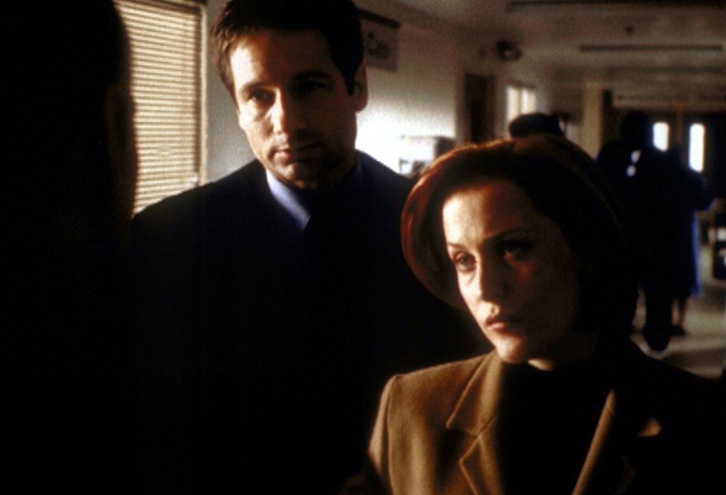 Mit Sheriff Harden (Tom Bower, l.) haben es Scully (Gillian Anderson, r.) und Mulder (David Duchovny, M.) nicht leicht. - Bildquelle: TM +   2000 Twentieth Century Fox Film Corporation. All Rights Reserved.
