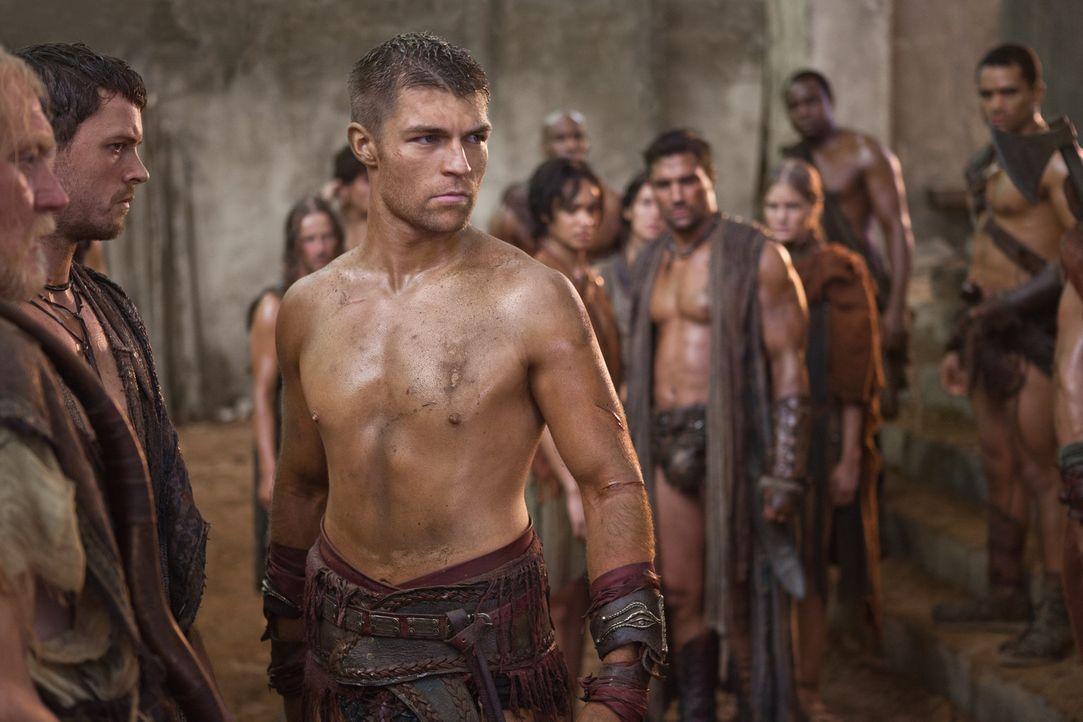 Spartakus (Liam McIntyre) und seine Leute beschließen, am Tempel eine Wehrmauer zu errichten und unterirdische Fluchtwegen anzulegen. Außerdem sol... - Bildquelle: 2011 Starz Entertainment, LLC. All rights reserved.