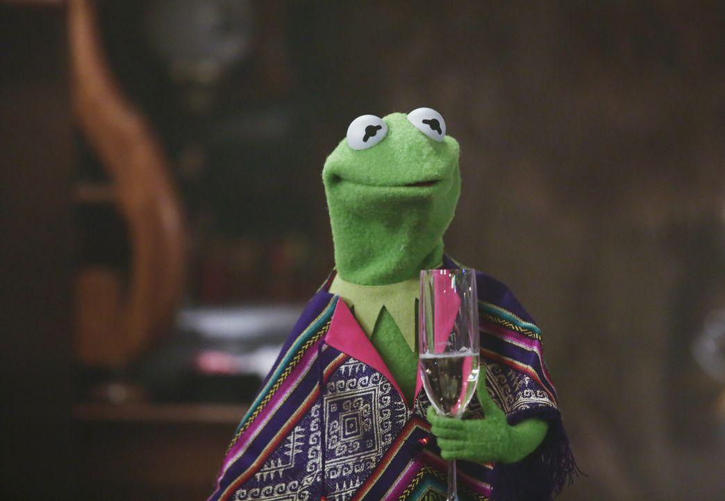 Möchte Arbeit und Privatleben trennen - doch mit Miss Piggy ist das gar nicht so leicht: Kermit ... - Bildquelle: Nicole Wilder ABC Studios