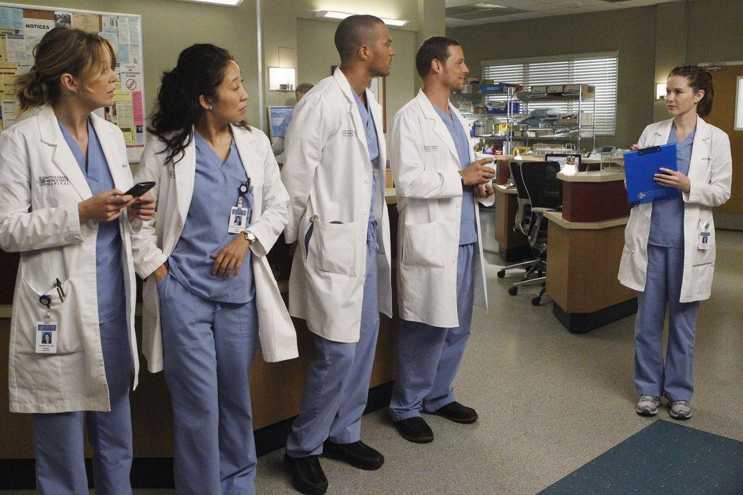 Die Assistenzärzte Meredith (Ellen Pompeo, l.), Cristina (Sandra Oh, 2.v.l.), Jackson (Jesse Williams, M.), Alex (Justin Chambers, 2.v.r.) und Apri... - Bildquelle: ABC Studios