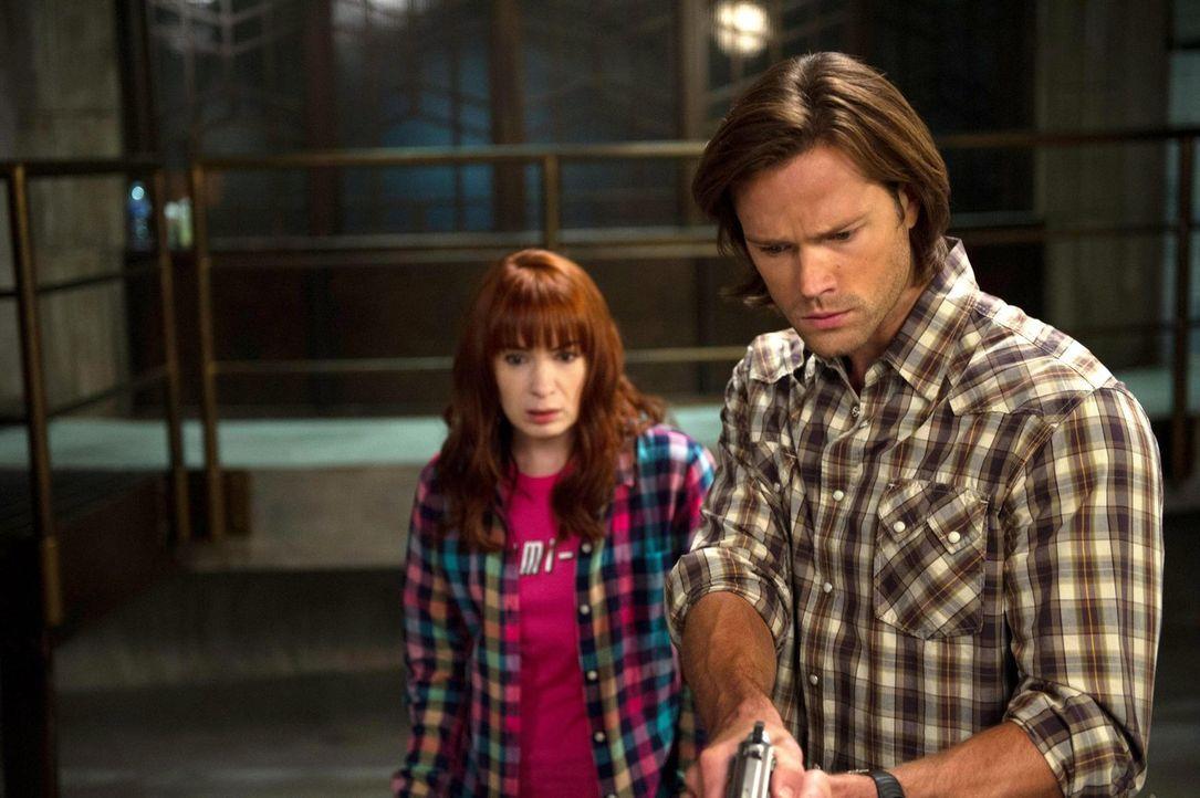 Ein ungewöhnliches und vor allem magisches Abenteuer wartet auf Charlie (Felicia Day, l.) und Sam (Jared Padalecki, r.) ... - Bildquelle: 2013 Warner Brothers