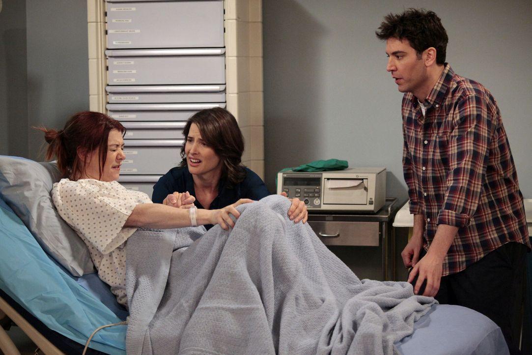 Während Marshall verzweifelt versucht, zu Lily (Alyson Hannigan, l.) zu kommen, geben Ted (Josh Radnor, r.) und Robin (Cobie Smulders, M.) alles, um... - Bildquelle: 20th Century Fox International Television