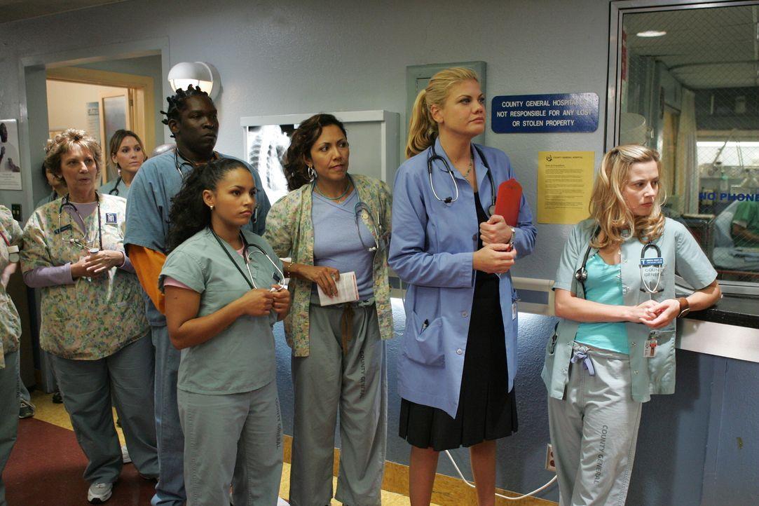 Besprechung: (v.l.n.r.) Malik (Deezer D.), Inez (April Lee Hernandez), Chuny (Laura Ceron), Eve (Kristen Johnston) und Sam  (Linda Cardellini) ... - Bildquelle: Warner Bros. Television