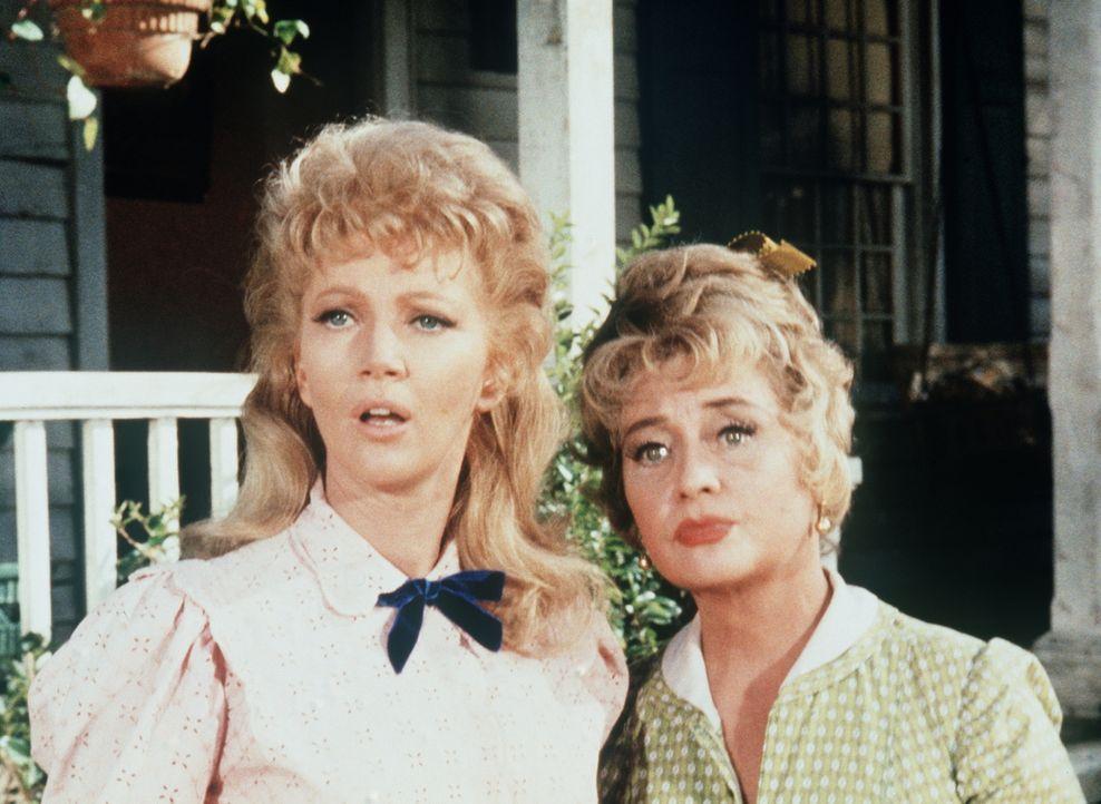 Lauras (Kathie Browne, l.) resolute Tante Lil (Joan Blondell, r.) greift als 'Amors Abgesandte' ein, um Adam und ihre Nichte einander näher zu bring... - Bildquelle: Paramount Pictures