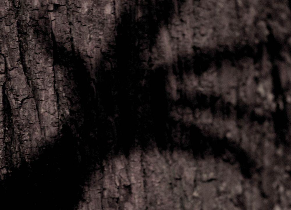Der Legende nach ist der schwarze Mann unsichtbar für Erwachsene. Nur Kinder können ihn sehen. Es sucht alle paar Jahre ein kleines Dorf auf, um das... - Bildquelle: Stefan Haring ProSieben
