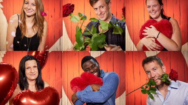 neue dating show sixx