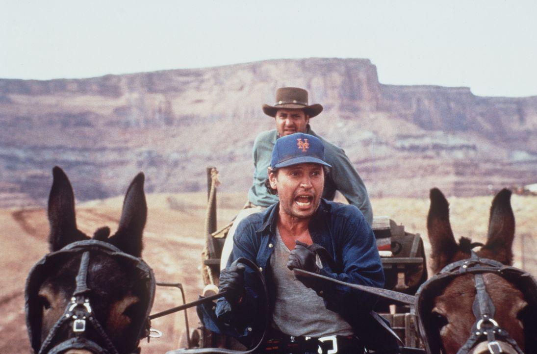 Auf der Suche nach einem Goldschatz: Mitch (Billy Crystal, vorne) ... - Bildquelle: Warner Bros.