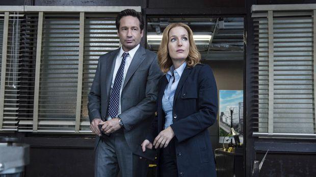 Ein neuer mysteriöser Fall wartet auf Mulder (David Duchovny, l.) und Scully...