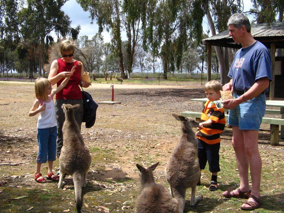 Detlef Hölscher (46) will mit seiner Frau Karen (41) und den beiden Kindern Marieke (6) und Daniel (5) nach Australien auswandern ... - Bildquelle: kabel eins