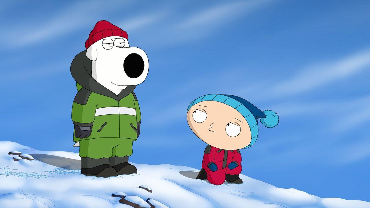 Brian (l.) und Stewie (r.) können nicht glauben, dass sie bei dieser fürchterlichen Kälte den Mount Everest besteigen sollen ... - Bildquelle: 2013 Twentieth Century Fox Film Corporation. All rights reserved.
