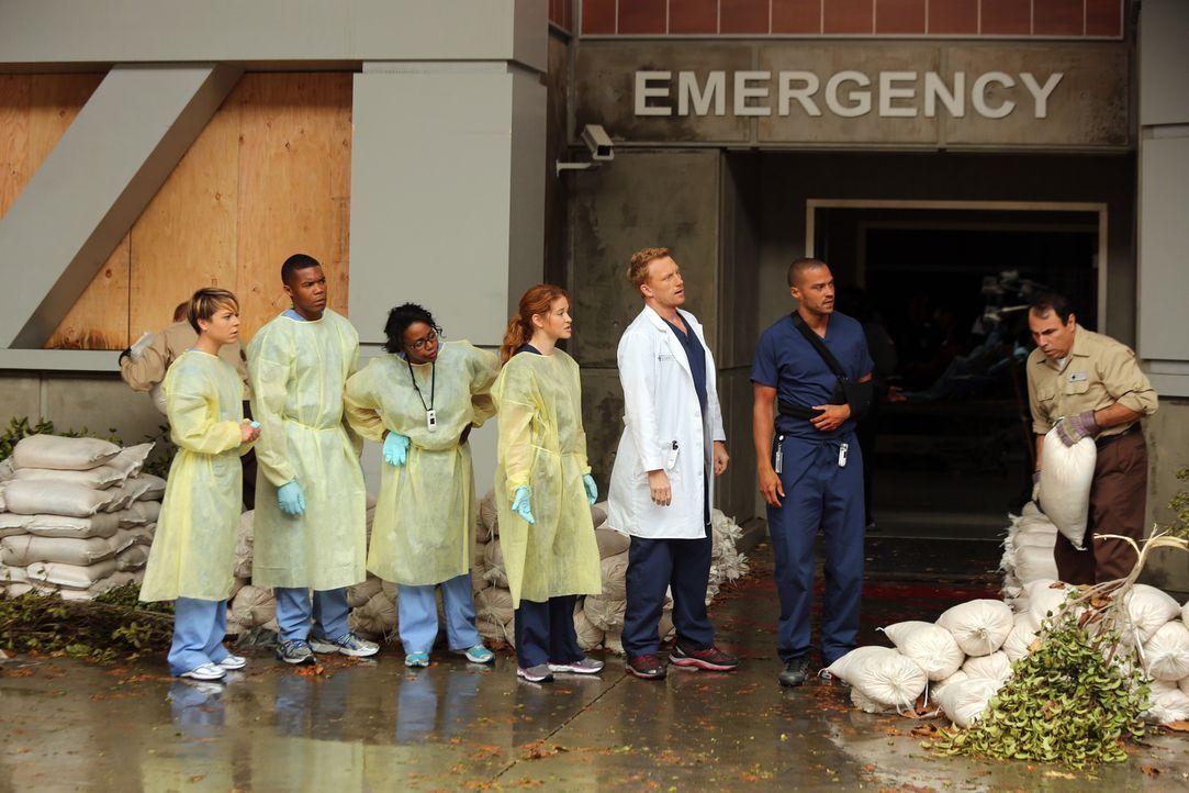 Nachdem sich der Sturm verzogen hat, haben die Ärzte Heather (Tina Majorino, l.), Shane (Gaius Charles, 2.v.l.), Stephanie (Jerrika Hinton, 3.v.l.),... - Bildquelle: ABC Studios