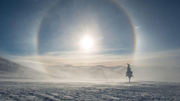 Alaskas Landschaften werden im Winter zu einer glitzernden Märchenwelt ... ©...