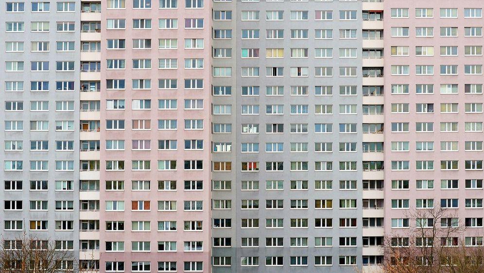- Bildquelle: Jens Kalaene/dpa-Zentralbild/dpa