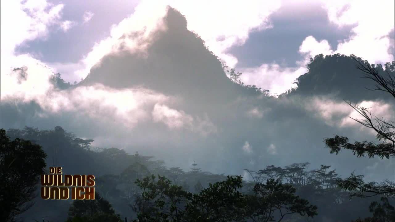 Gress in Papua Neuguinea9 - Bildquelle: kabel eins