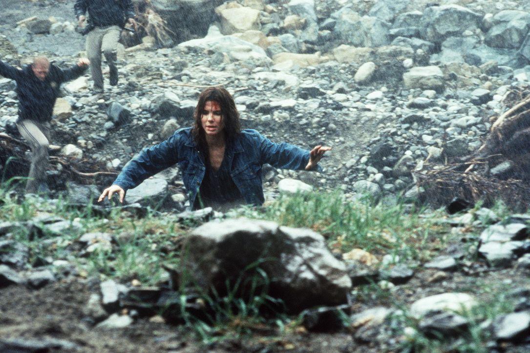 Von gnadenlosen Killern gejagt: Angela (Sandra Bullock) ... - Bildquelle: Columbia Pictures Corporation