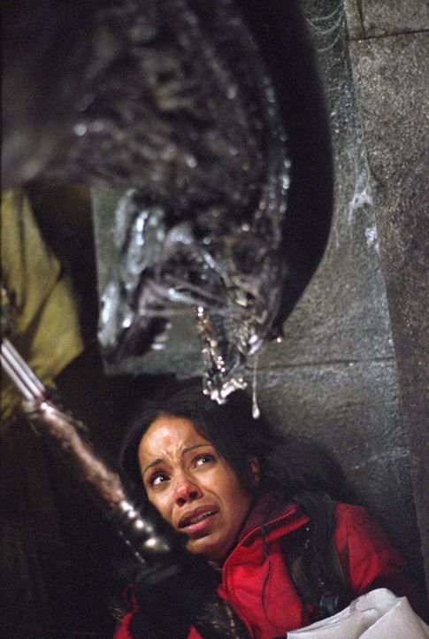 "Gerät in einen grauenvollen, todbringenden Horrortrip: Alexa ""Lex"" Woods (Sanaa Lathan) ... - Bildquelle: 2004 Twentieth Century Fox Film Corporation. All rights reserved."
