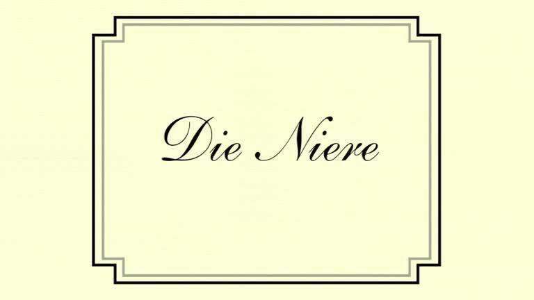 How-I-Met-Your-Mother-Bilder-Gallery-Die-Niere (1).jpg - Bildquelle: 20th Century fox
