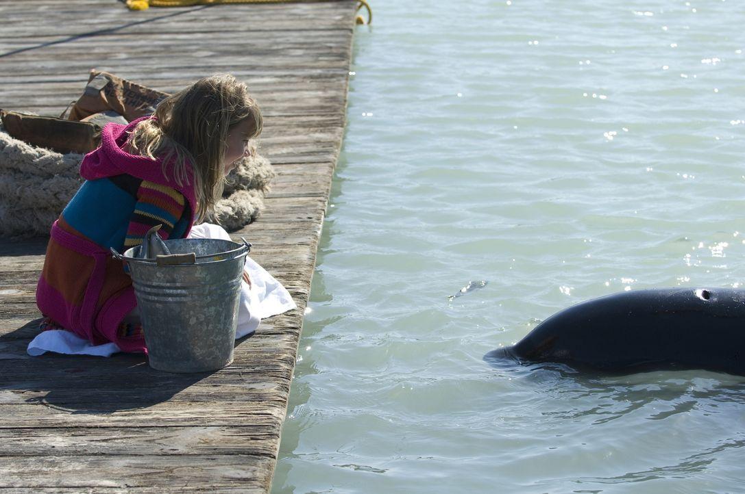 """Als Kirra (Bindi Irwin) einen gestrandeten jungen Schwertwal entdeckt, freundet sie sich mit ihm an und gibt ihm den Namen """"Willy"""". Ihr Opa wittert... - Bildquelle: 2009 Warner Brothers"""