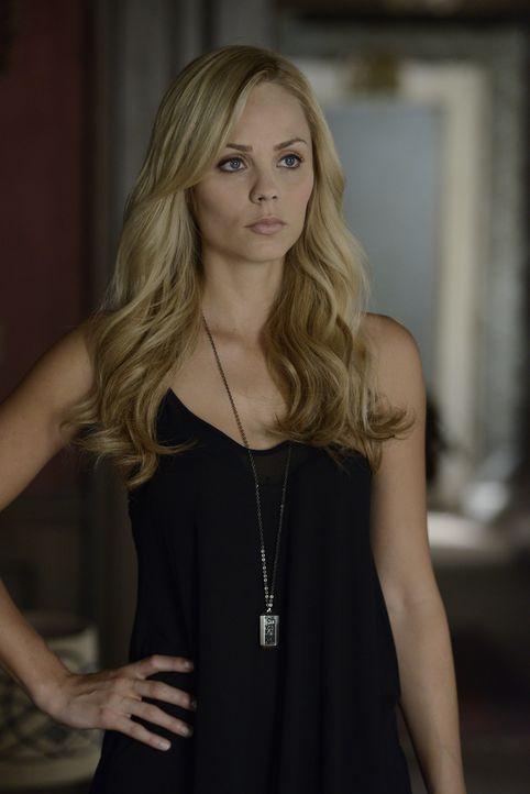 In Stonehaven wird Elena (Laura Vandervoort) mit ihrer Vergangenheit konfrontiert und möchte, so schnell es geht, in ihr menschliches Leben zurückke... - Bildquelle: 2014 She-Wolf Season 1 Productions Inc.