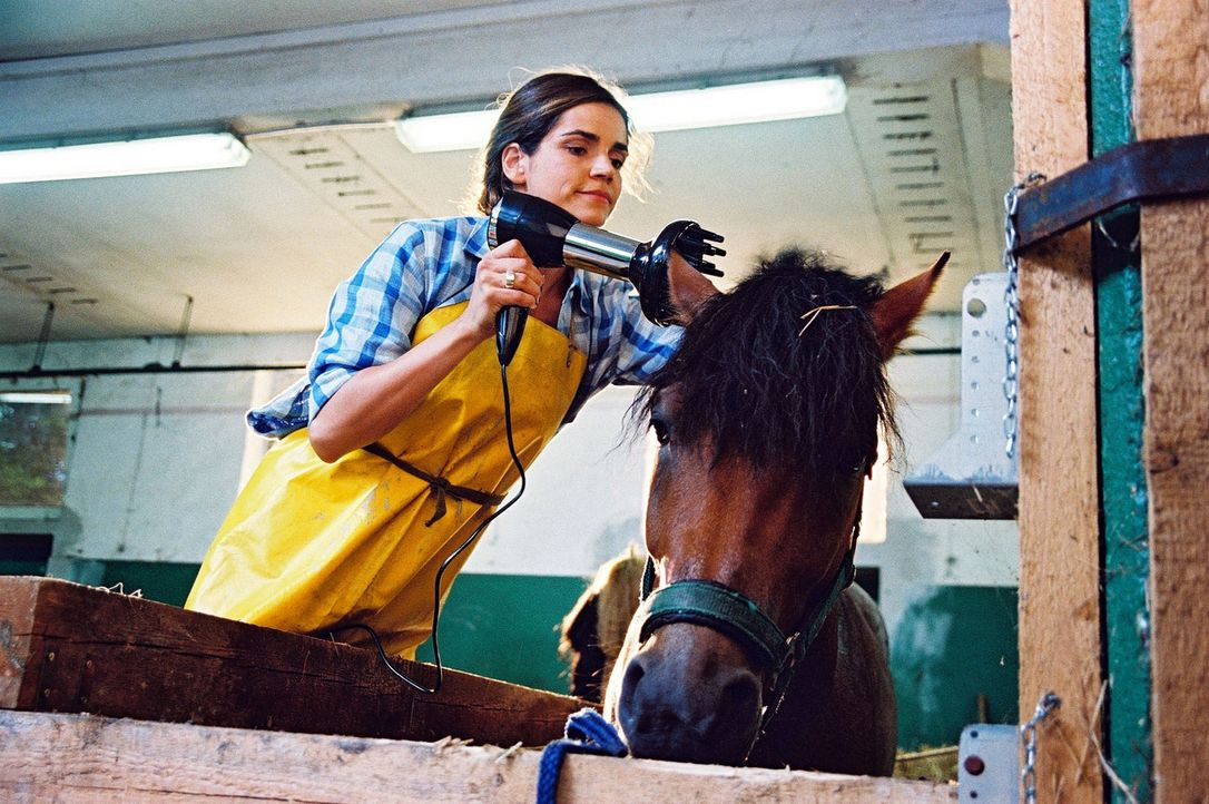 Sandra (Rebecca Immanuel) gibt dem Ackergaul den letzten Schliff und bändigt seine wilde Mähne ... - Bildquelle: Hardy Spitz Sat.1