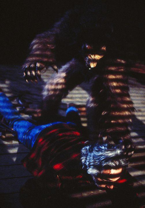 Der Rancher Jim Parker (Donnelly Rhodes, liegend) wird von dem werwolfähnlichen Wesen angegriffen ... - Bildquelle: TM +   2000 Twentieth Century Fox Film Corporation. All Rights Reserved.