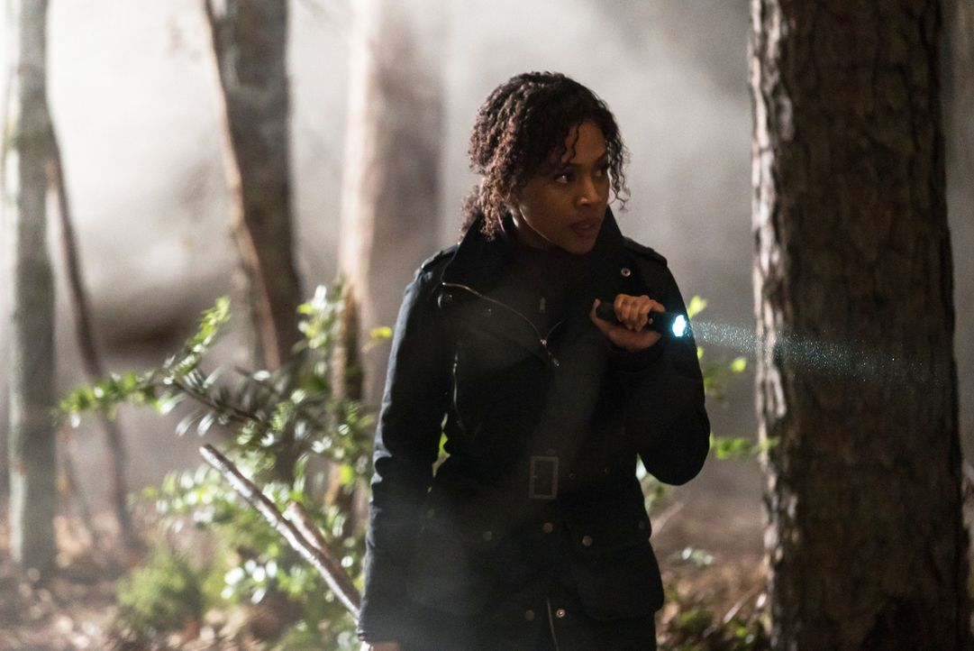 Eine Trainingseinheit des FBI gerät außer Kontrolle, als Abbie (Nicole Beharie) und ihr Team von einem seltsamen Wesen attackiert werden ... - Bildquelle: 2015-2016 Fox and its related entities.  All rights reserved.