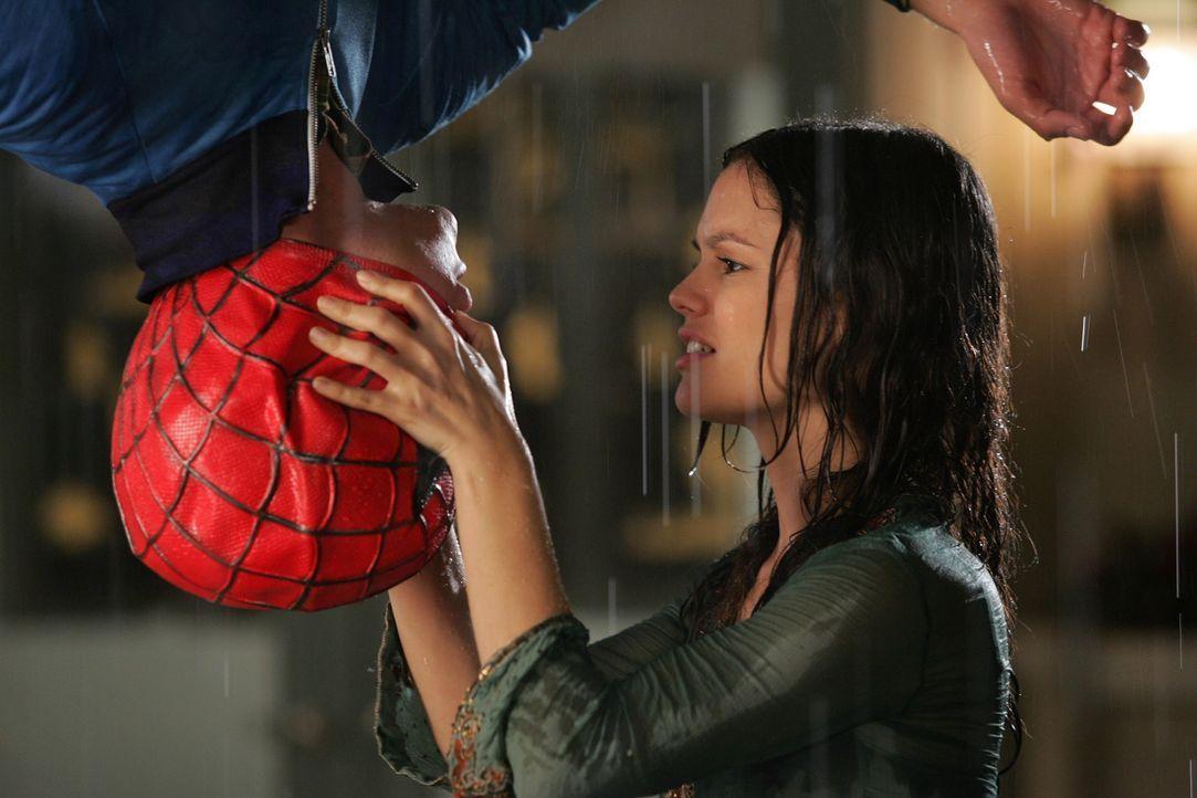Nachdem Seth (Adam Brody, l.) versucht hat, die Antenne auf dem Dach auszurichten, stürzt er und bleibt in Spiderman ähnlicher Pose kopfüber am D... - Bildquelle: Warner Bros. Television