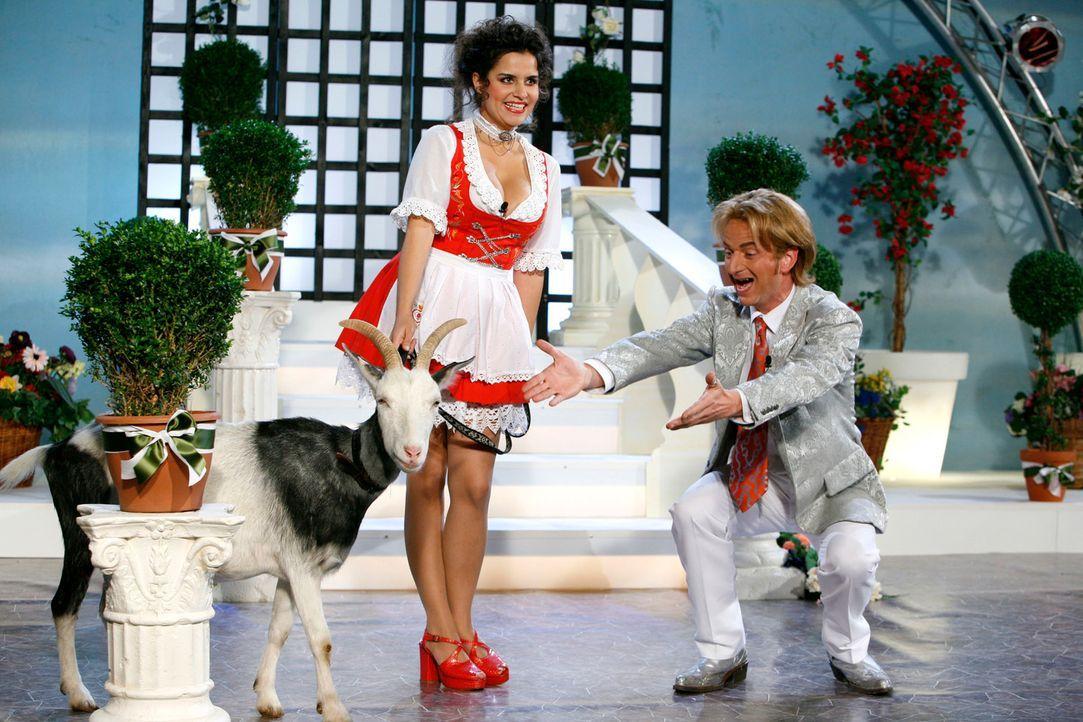 Florian Silbereisen (Michael Kessler, r.) begrüßt seinen tierischen Gast, der von einer hübschen Dame (Mona Sharma, l.) hereingeführt wird, auf der... - Bildquelle: Kai Schulz ProSieben