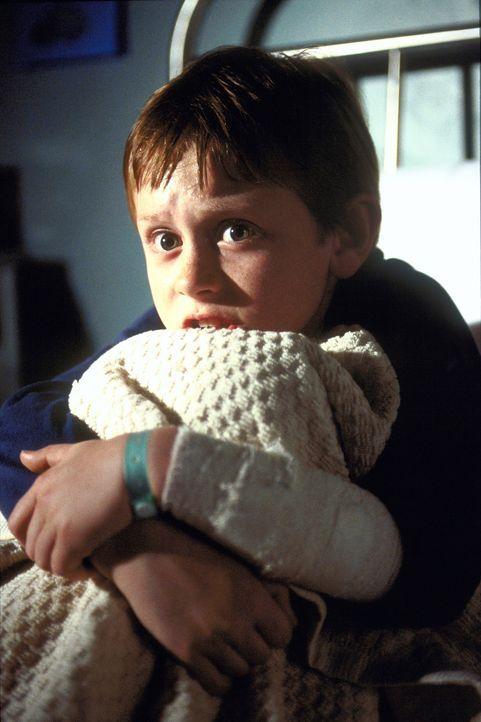 Ohne Caitlins kleinen Bruder Michael (Lee Cormie) will die mordende Zahnfee nicht wieder verschwinden ...dende Zahnfee im Nacken: (v.l.n.r.) Michael... - Bildquelle: 2004 Sony Pictures Television International. All Rights Reserved.