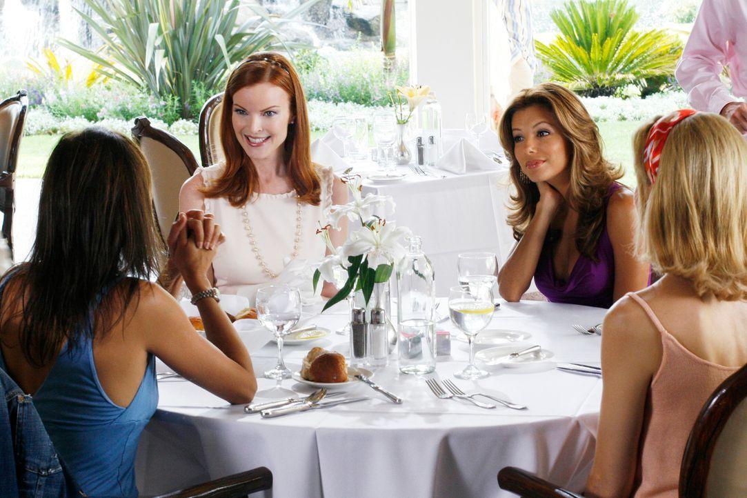 Lynette (Felicity Huffman, r.), Gabrielle (Eva Longoria, 2.v.r.) und Susan (Teri Hatcher, l.) sind von der plötzlichen Verlobung überrascht, wollen... - Bildquelle: 2005 Touchstone Television  All Rights Reserved