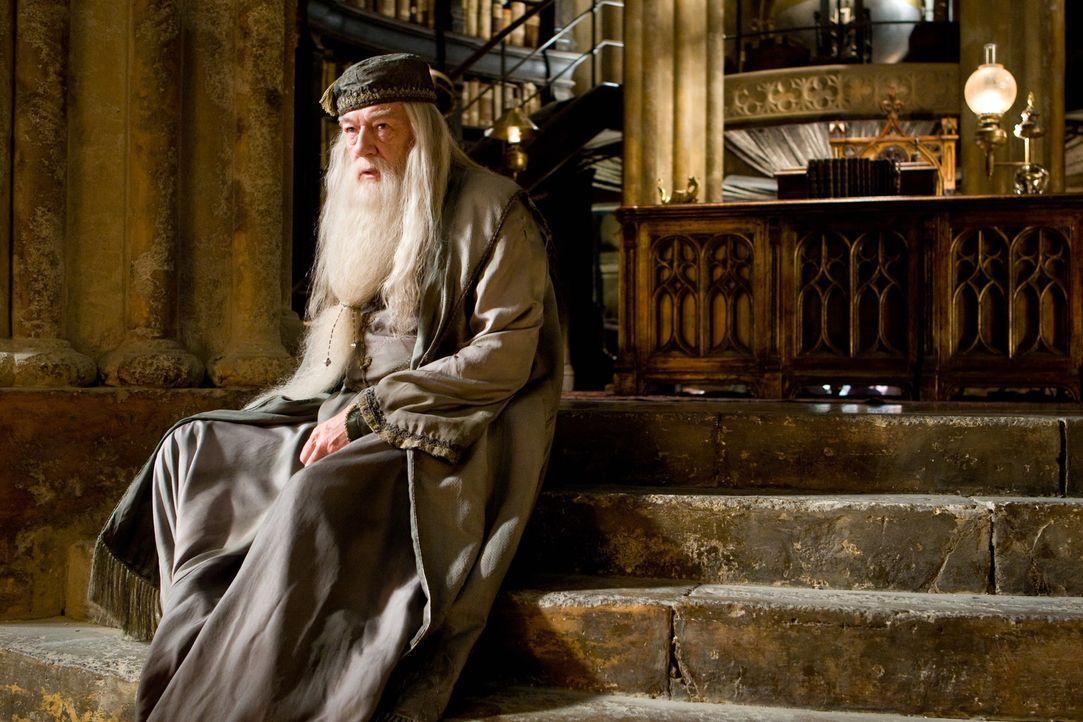Um die Welt vor dem Bösen zu retten, heckt Zauberer Dumbledore (Michael Gambon) einen Plan aus, der von ihm einen hohen Preis abfordert ... - Bildquelle: Warner Brothers