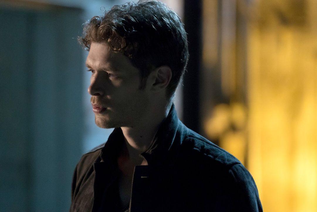 Klaus (Joseph Morgan) macht Aurora klar, wie viel er wirklich für sie empfindet und macht damit Platz für eine neue Allianz ... - Bildquelle: Warner Bros. Entertainment Inc.