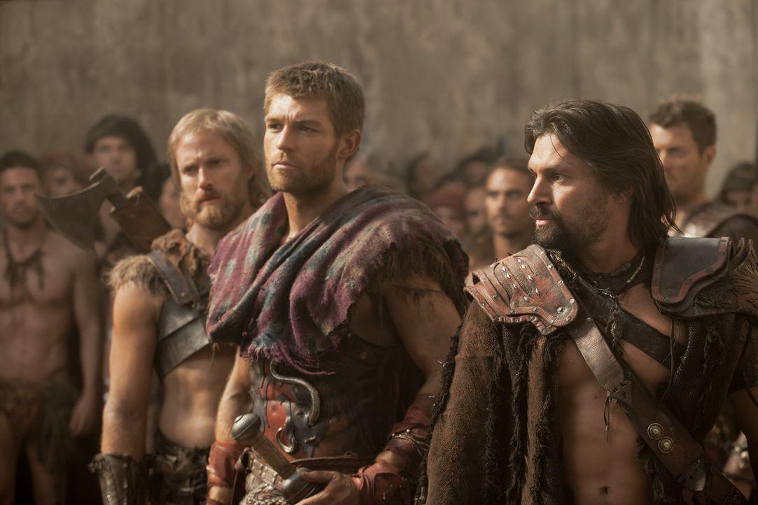Die Lage in der Stadt eskaliert, als Crixus' (Manu Bennett, r.) Frau Naevia den Freund von Gannicus, einen Römer, tötet. Da lässt sich auch Crixus d... - Bildquelle: 2012 Starz Entertainment, LLC. All rights reserved.