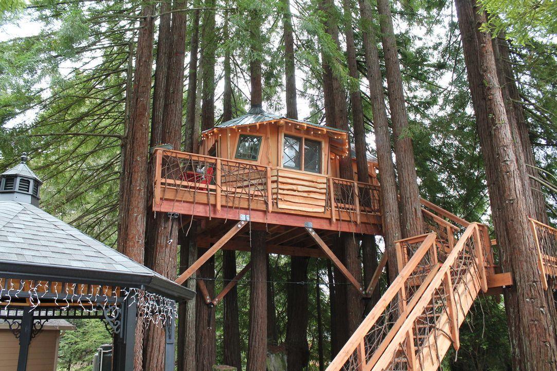 Fort Bragg, eine Kleinstadt in Kalifornien: Die Treehouse Guys verwirklichen die Träume einer Familie, indem sie ein 200 Quadratmeter großes Baumhau... - Bildquelle: 2015, DIY Network/Scripps Networks, LLC. All Rights Reserved.
