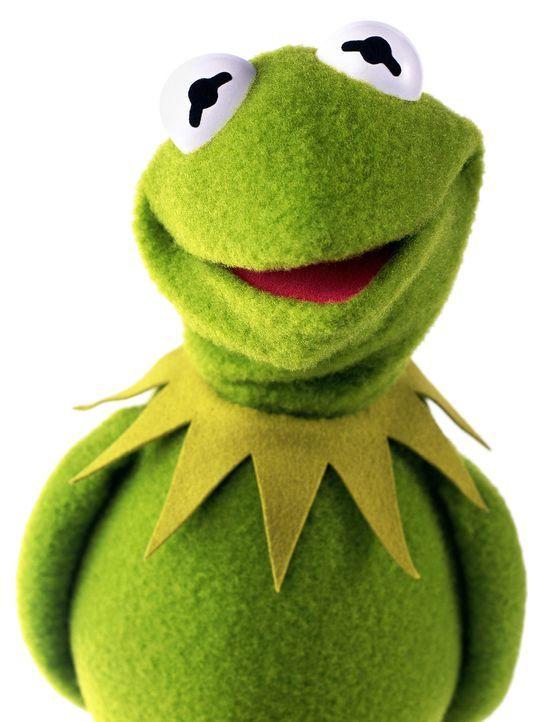 muppets-freisteller-06-disneyjpg 1437 x 1900 - Bildquelle: Disney