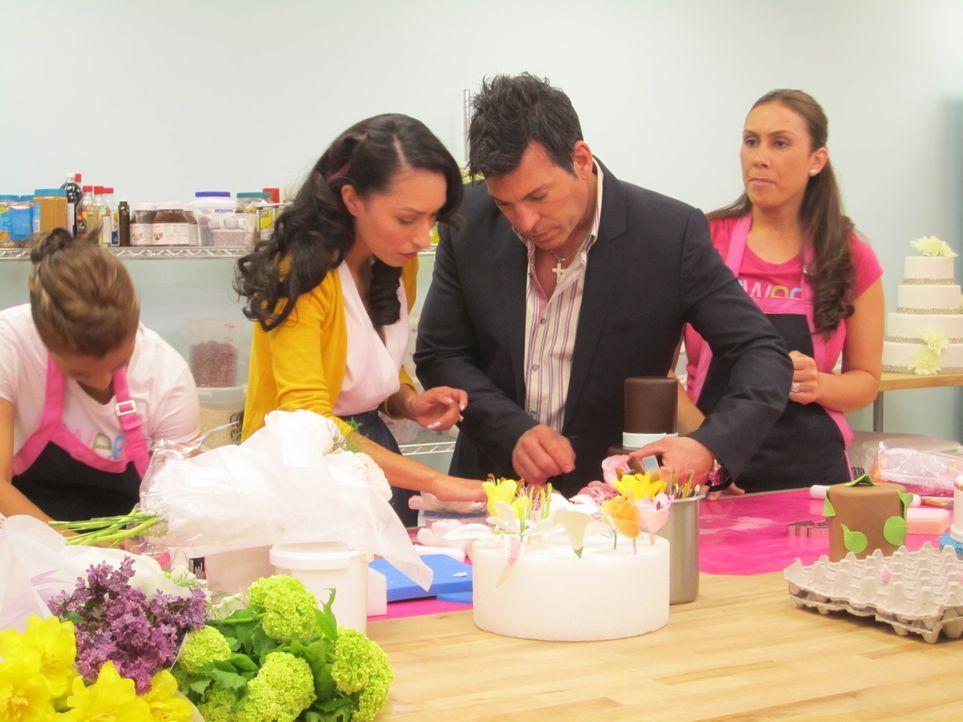 (4. Staffel) - Jede Hochzeit braucht auch eine perfekte Torte. David Tutera (2.v.r.) probiert mit den Bräuten unterschiedliche Geschmacksrichtungen... - Bildquelle: 2012 PilgrimStudios