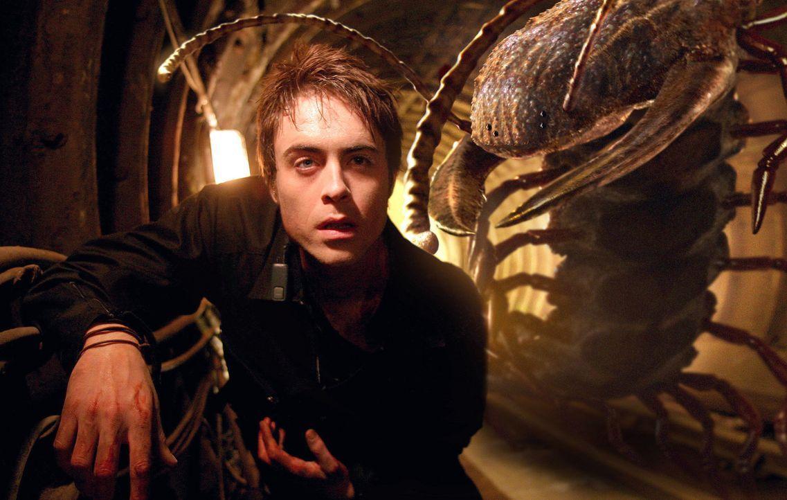 Stephen (James Murray) versucht sich vor den Riesenspinnen zu retten ... - Bildquelle: ITV Plc