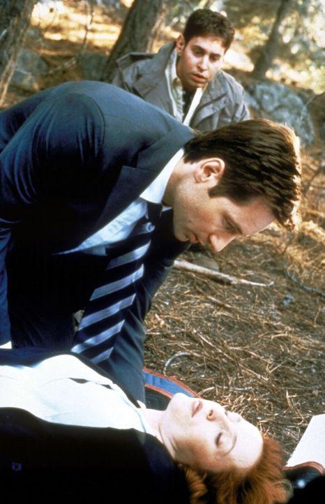 Mulder (David Duchovny, M.) und Richie (Judd Trichter) kümmern sich um die ohnmächtig gewordene Scully (Gillian Anderson, vorne). - Bildquelle: TM +   2000 Twentieth Century Fox Film Corporation. All Rights Reserved.