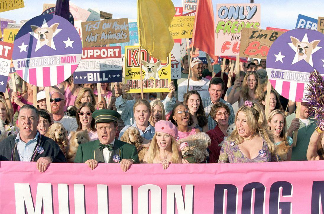 Tierversuche ade: (v.l.n.r.) Stanford Marks (Bruce McGill), Sid Post (Bob Newhart), Elle (Reese Witherspoon) und Paulette (Jennifer Coolidge) ? - Bildquelle: Metro-Goldwyn-Mayer (MGM)