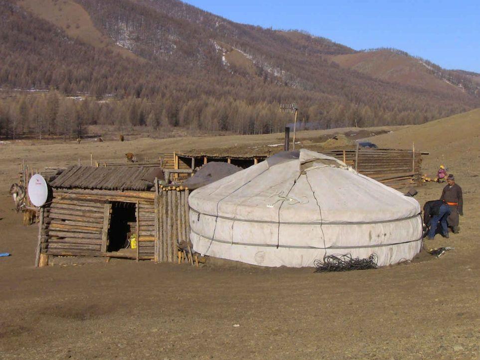 Aus den unendlichen Weiten der Mongolei gibt es für die deutschen Teenies kein Entkommen ... - Bildquelle: kabel eins