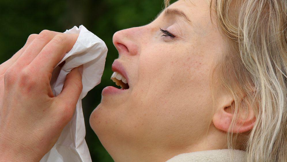 Esche-Pollen: Höhenflug im April - Bildquelle: dpa