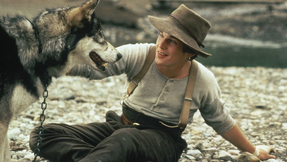 Wolfsblut - Bildquelle: 27.05.2012 •  09:50 Uhr