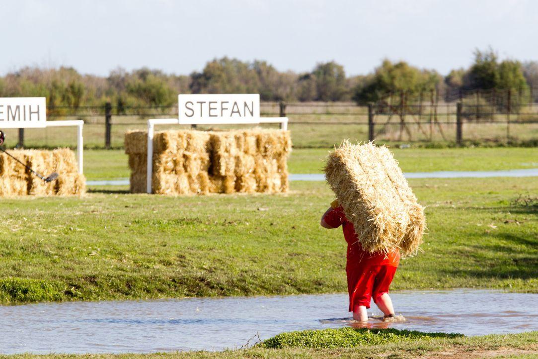 Die meisten Kandidaten haben nur einen Wunsch: Stefan aus der Challenge zu drängen ... - Bildquelle: Enrique Cano SAT.1